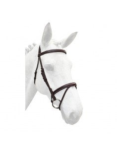 Silver Crown bridle with reins
