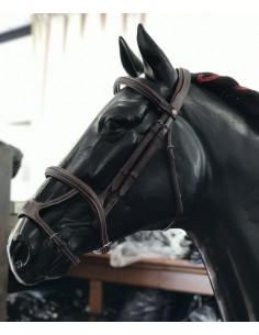 Bridle stock Equiline Double Noseband with reins