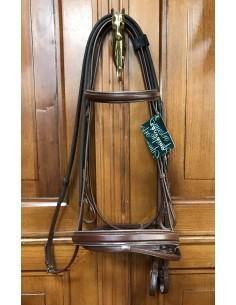 Testiera Equestro con bordino argento + redini