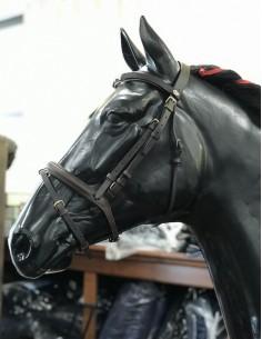 Testiera Umbria Equitazione con redini