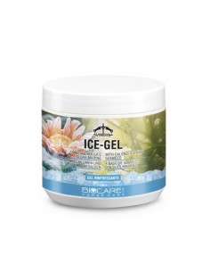 GEL RINFRESCANTE VEREDUS ICE GEL