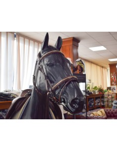 BRIDLE EQUILINE CLINCHERED