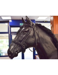 BRIDLE EQUILINE WITHOUT...