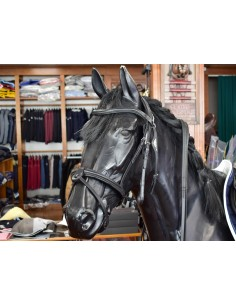 BRIDLE EQUILINE WITH...