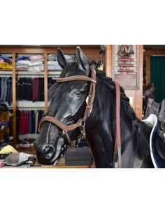 BRIDLE JUMP'IN NEW YORK BROWN