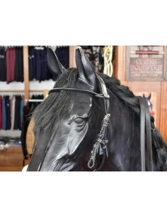 BRIDLE FOR JUMP'IN HACKAMORE