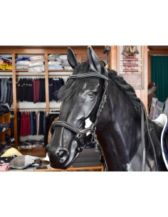BRIDLE JUMP'IN BLACK NEW YORK